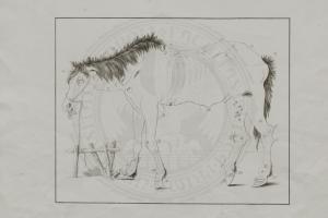 Das fehlerhafte Pferd, str. 3