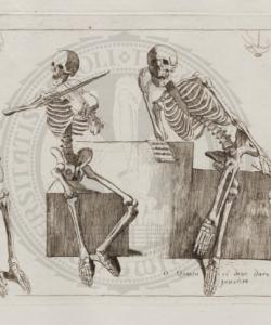 GAMELIN: Nouveau recueil d'ostéologie et de myologie
